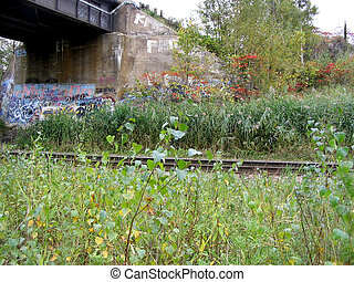 graffiti traintrack - train tracks passing under a train...