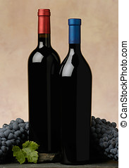 two wine bottles - two red wine bottles with grapes and...
