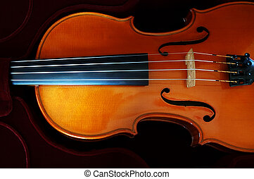Violin on dark red velvet