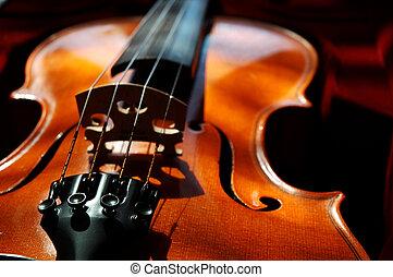 Violin in a dark red velvet case.