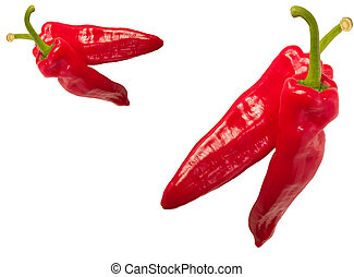 chilli peppers over a white background