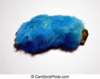 Blue Rabbit's Foot - A blue rabbit's foot on a white...