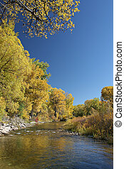 autumn creek - peaceful stream lined with the colors of...