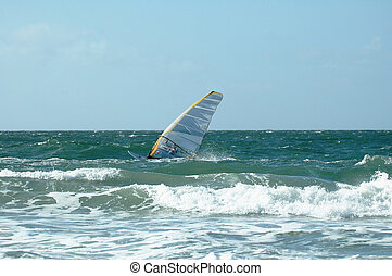Windsurfer 10 - Windsurfer in the waves
