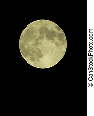harvest moon - full moon on a dark background