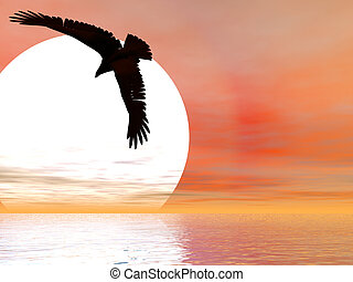 Swooping Eagle - Eagle descending in front of giant sun