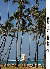 Waikiki Beach - A lifeguard station located on Waikiki