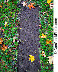 tire tracks - off road vehicles tire tracks