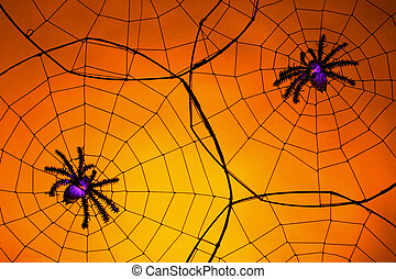Creepy Spiders - Halloween Theme: creepy spiders with purple...
