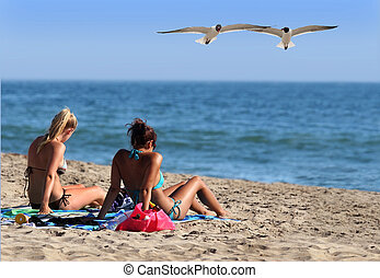 Check them out - Couple girls in a bikini and two seagulls...