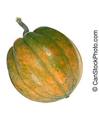 Winter Squash - squash isolated over white