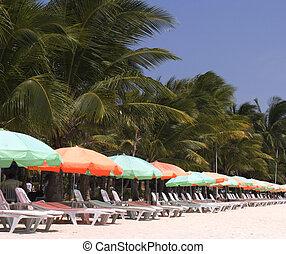 Beach chairs 2 - Beach chairs