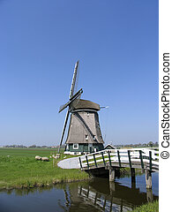 Dutch windmill 8