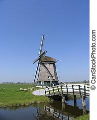 Dutch windmill 8
