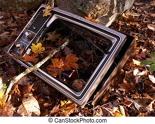 discarded tv - remnants of television found in woods