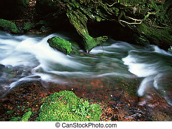Stream - Jiuzhaigou Valley Scenic and Historic Interest...