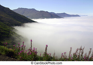 Fog Bank - Fluffy fog bank blankets the lower elevations of...