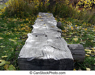 Log Bench - Old hewn log bench in the woods