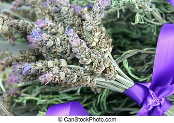Lavender Flowers - A bunch of fresh lavender tied with satin...