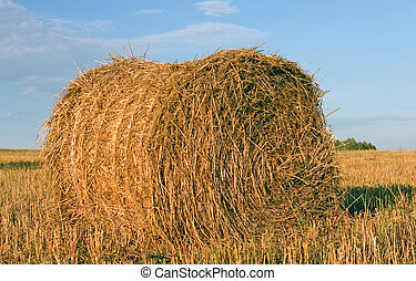 Hayrick, haystack