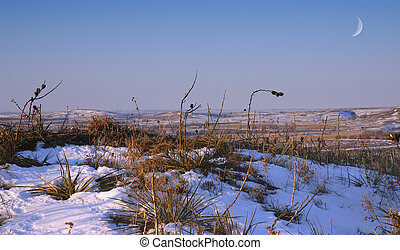 Winter Prairie - A snowscape of winter prairie with moon at...