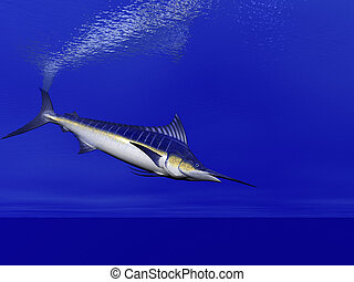 Marlin Swimming - Marlin swimming under water