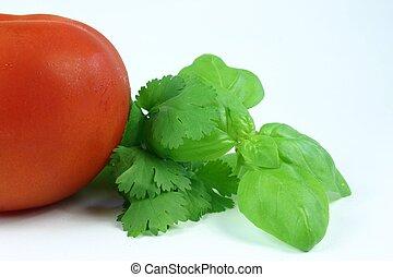 tomat, örtar