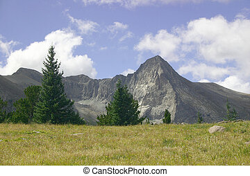 Mountain Meadows - High mountain meadow with view of Wet...