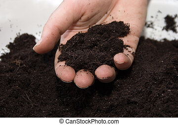 feel the earth - soil in hand