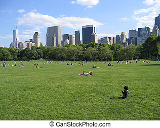 Central Park NY - New York City Central Park View - Summer...
