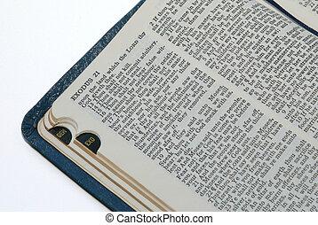 Bible - opened Bible