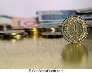 One zloty