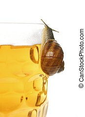 Snail on Beer - Snail on Glass of Beer