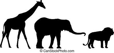 Jungle animals - A giraffe, a lion and an elephant in...