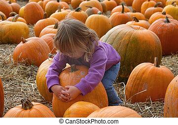 harvest 7006 - girl and pumpkins
