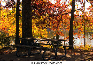 Fall by the lake - A lovely fall scene beside a lake in the...
