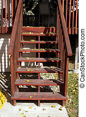 Stairs and the Leaves in Fall