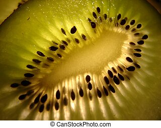 Kiwi Slice 1 - backlit thin slice of kiwi