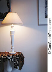 Lampshade - Room and lampshade,