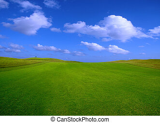 green field in Porto Santo Island