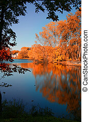 Fall Contrast - A fall lake scene like in a picture book. A...