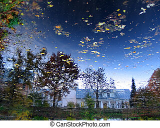 reflection of sky in pond in botanic garden, Tartu, Estonia
