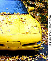 Yellow Sportscar - a sports car covered in leaves