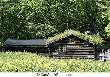 Norwegian Log House