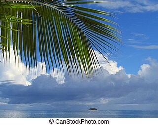 Palm tree leaves and cloudscape - Palm tree leaf in front of...
