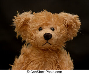 Teddy Bear against Black