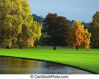 秋天, 在, 英國