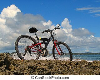 Mountain-bike in front of tropical ocean