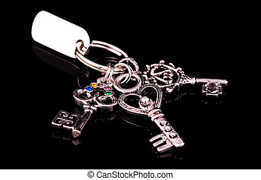 Silver Keys on a Keyring