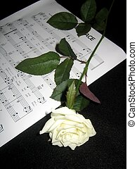 sheet music and rose - Hymn sheet music and a white rose